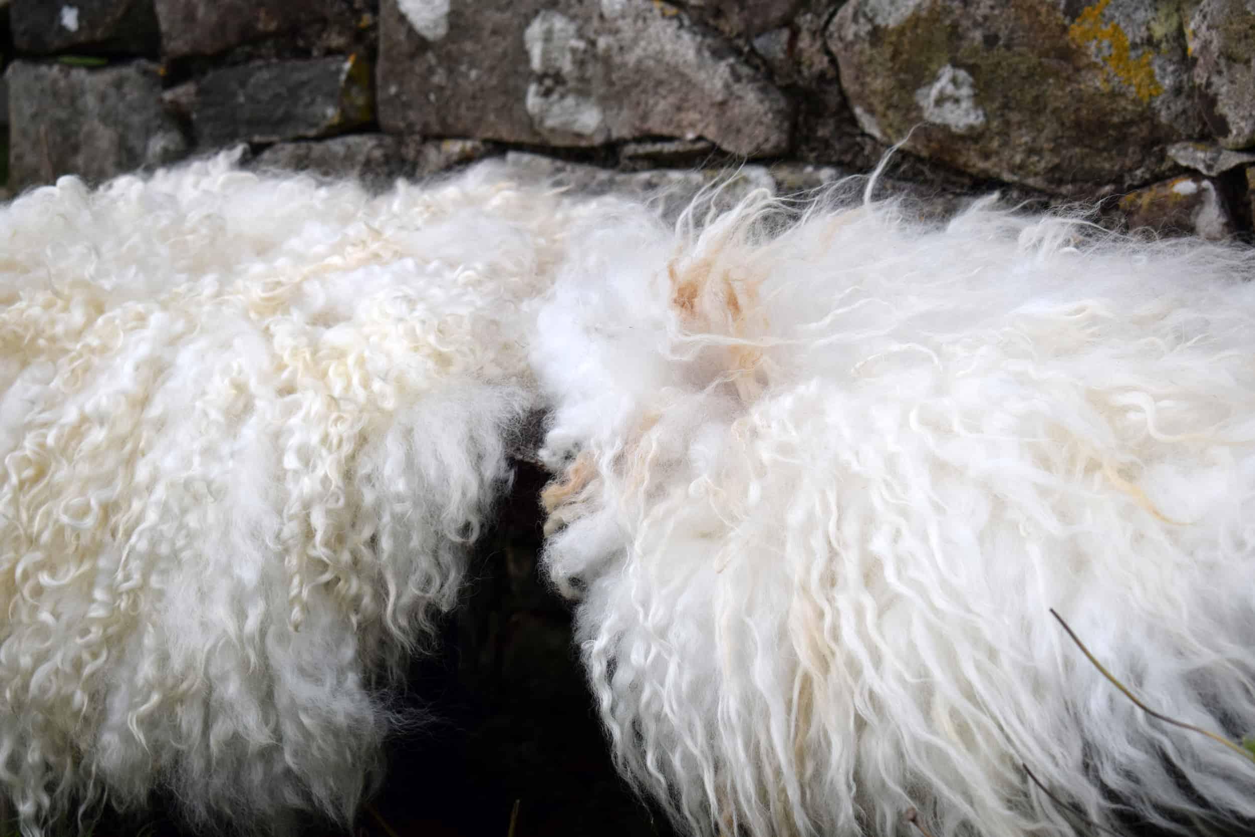 vegatarian sheepskin seat cover