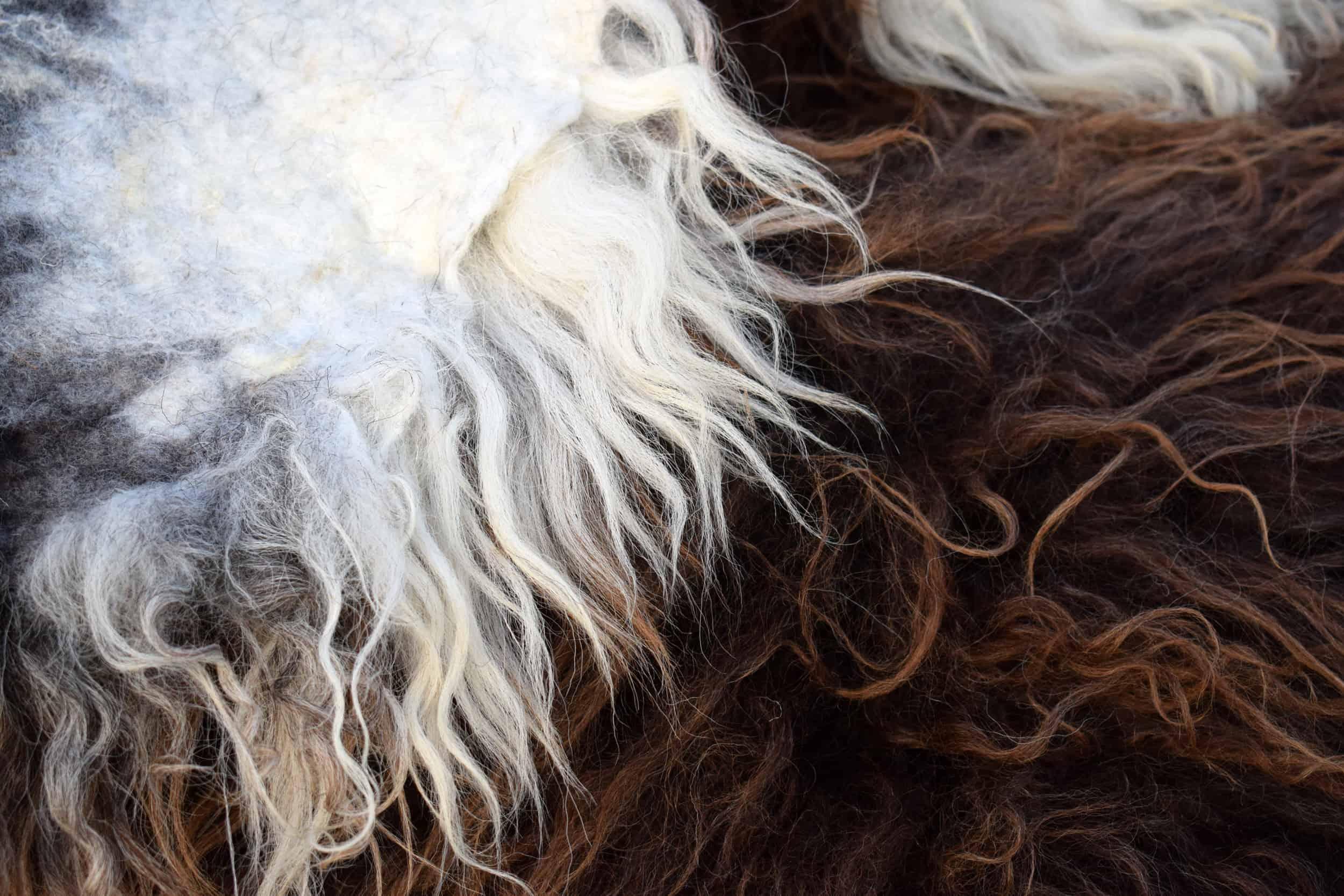 pepsi felted fleece rug