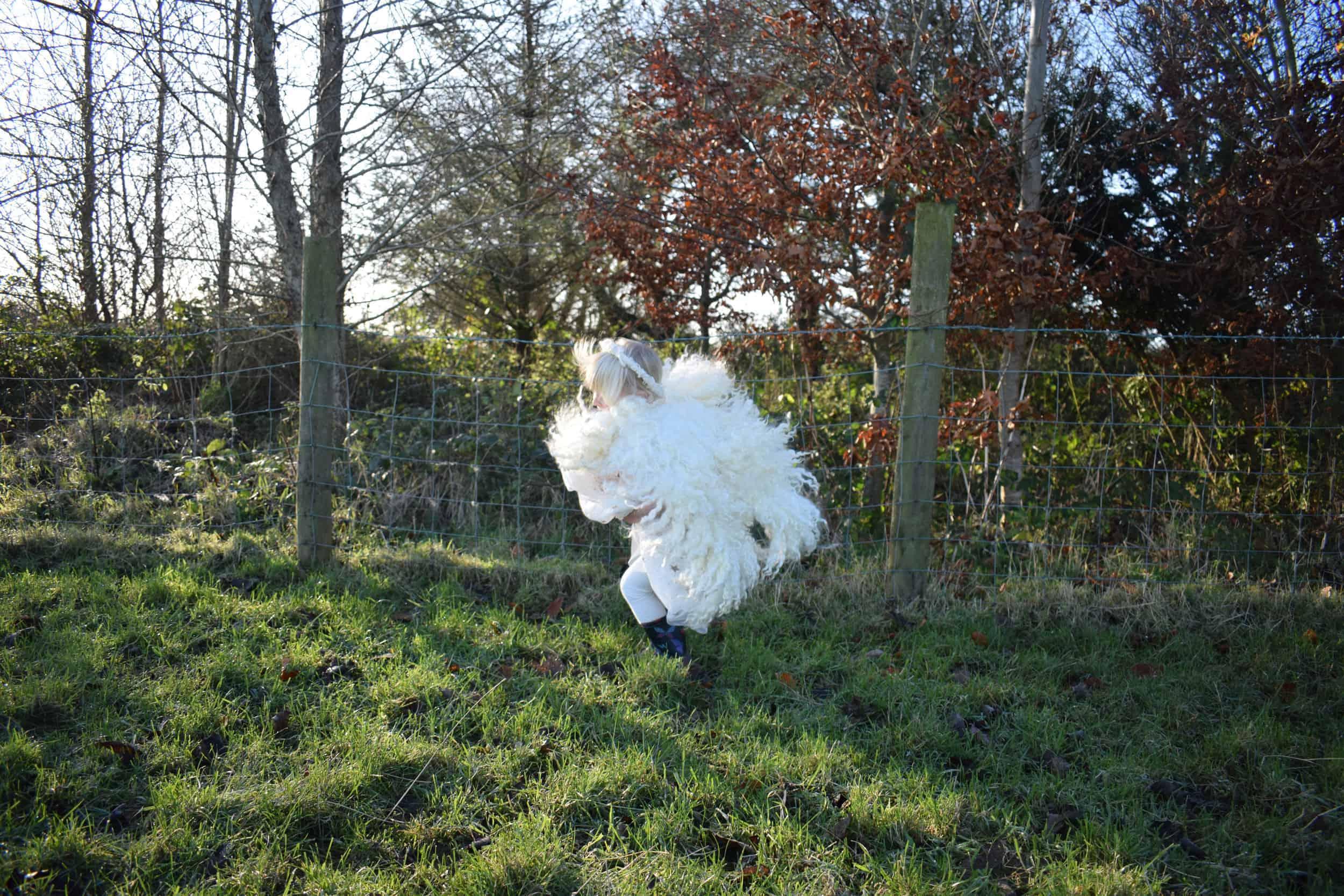 felted wool angel wings handmade greyface dartmoor wensleydale alice patchwork sheep