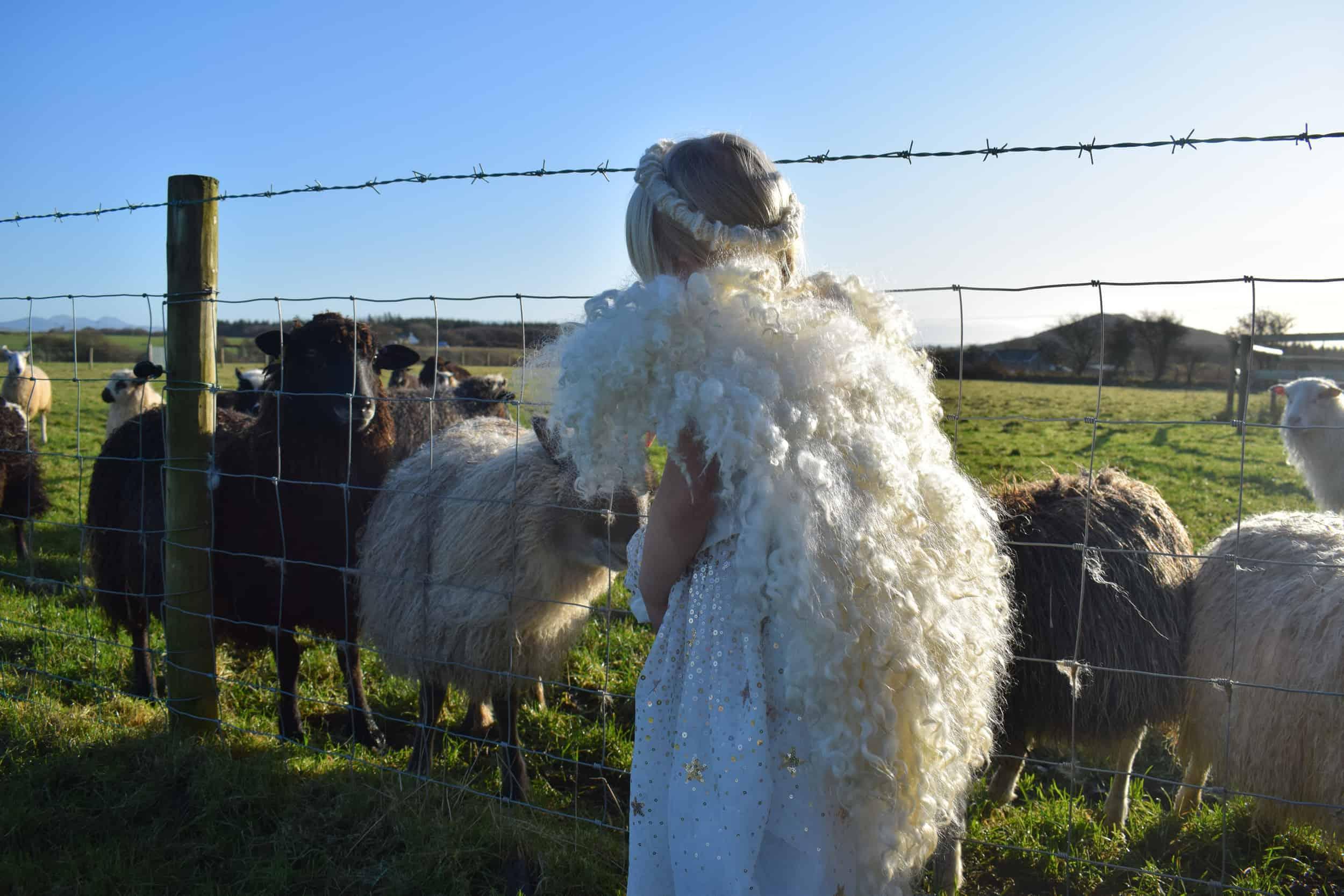 felted wool angel wings handmade greyface dartmoor wensleydale alice patchwork sheep 2