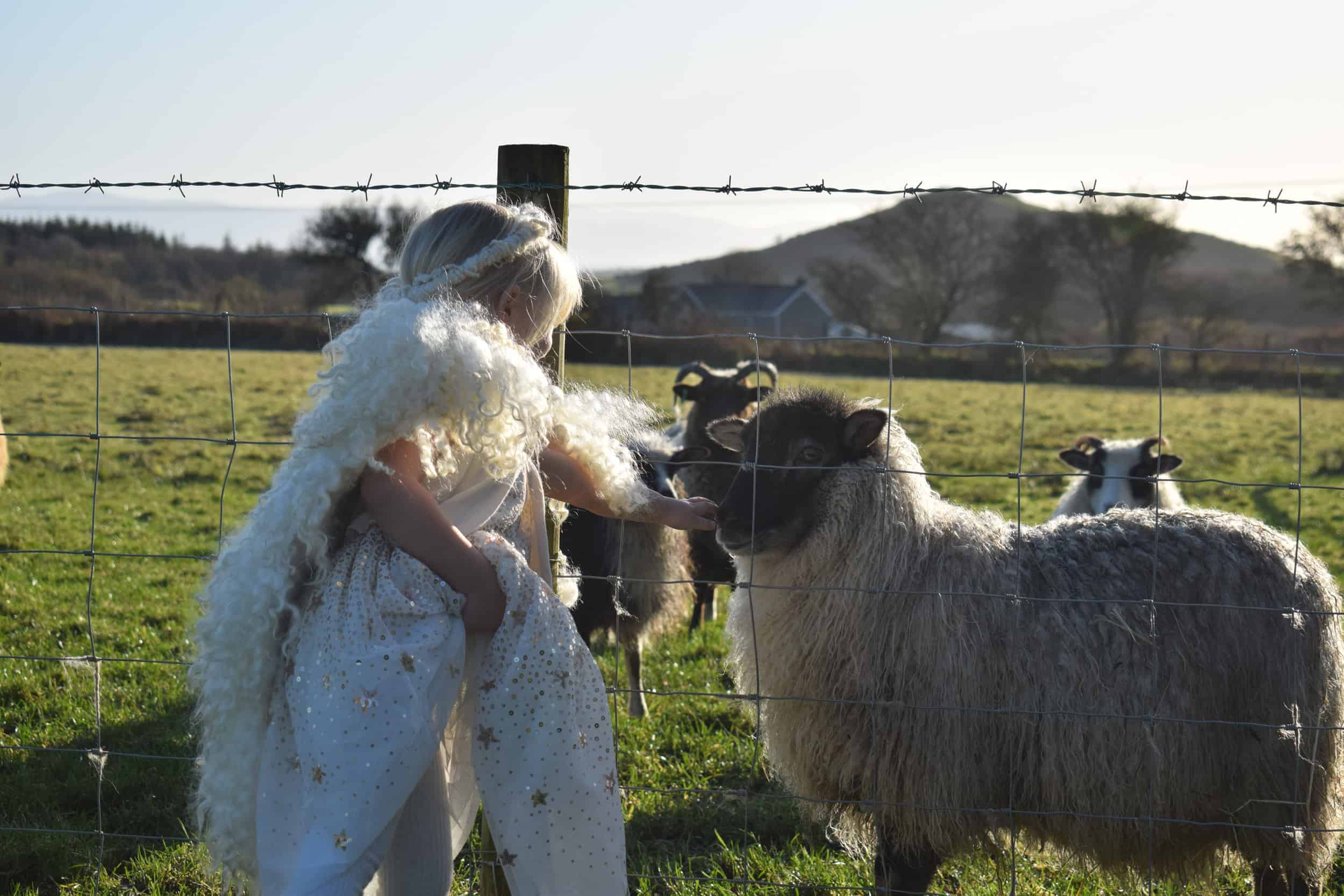 Elder meets angel elsie angel wings wool handmade icelandic sheep crossbreed 2