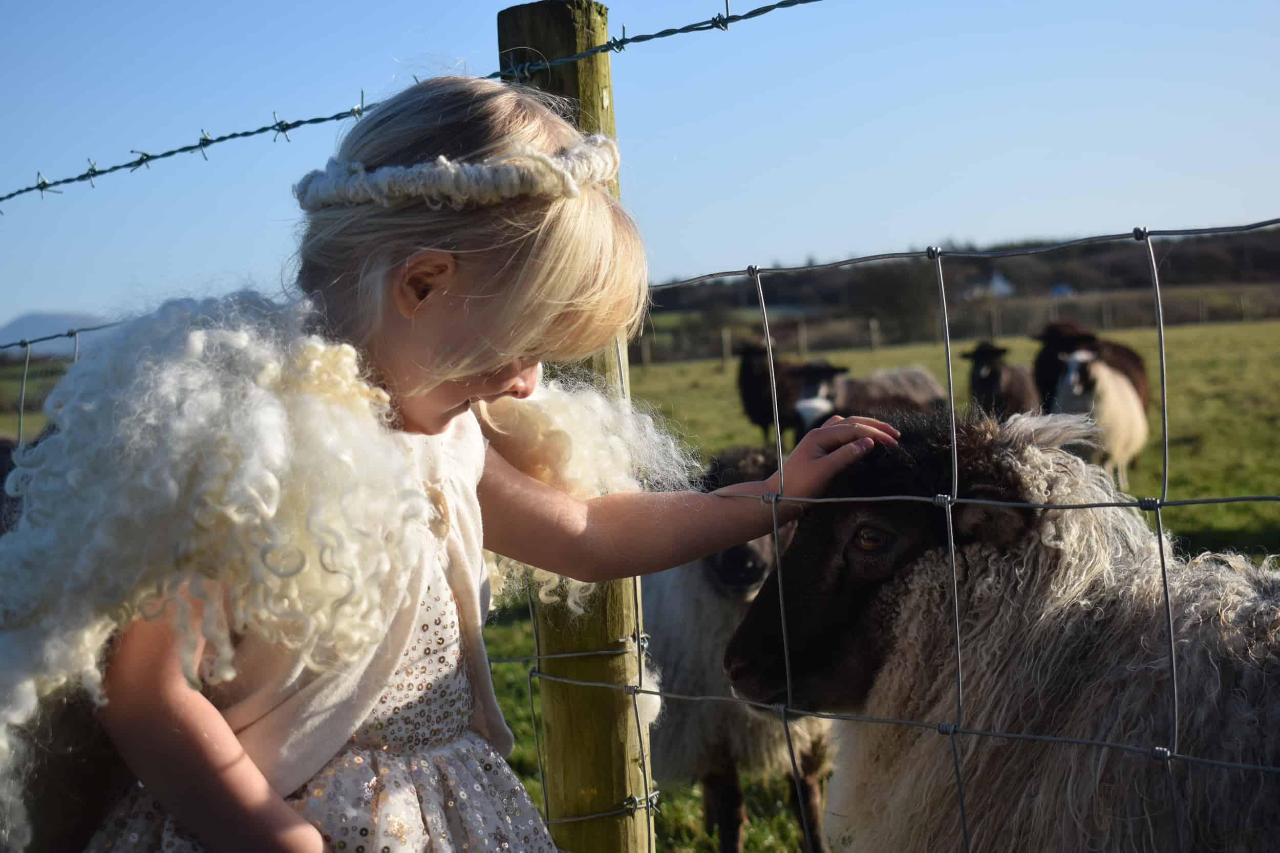 Elder meets angel elsie angel wings wool handmade icelandic sheep crossbreed