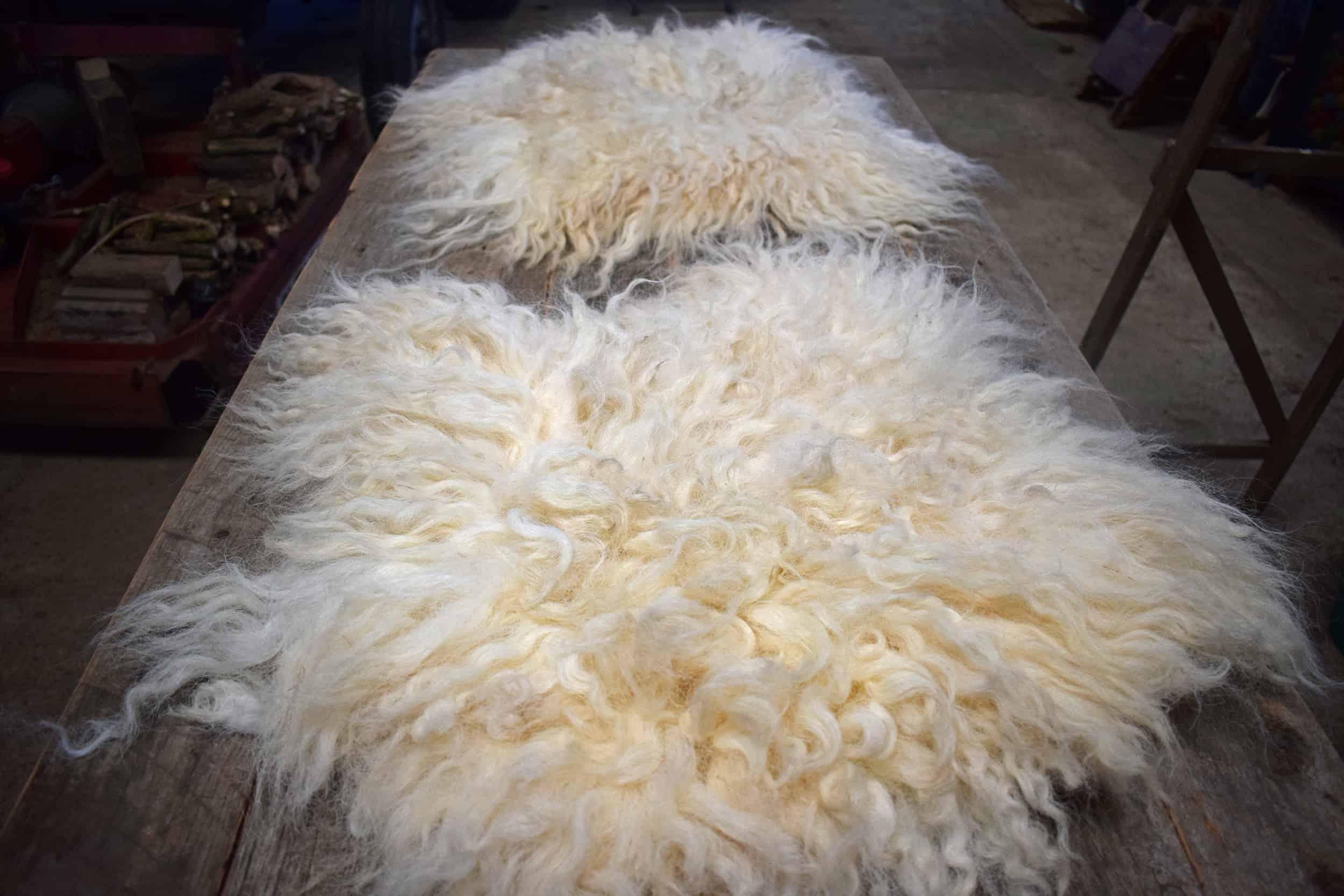 felted fleece seat pads vegetarian sheepskin nora valais blacknose cross greyface dartmoor silvernose wool