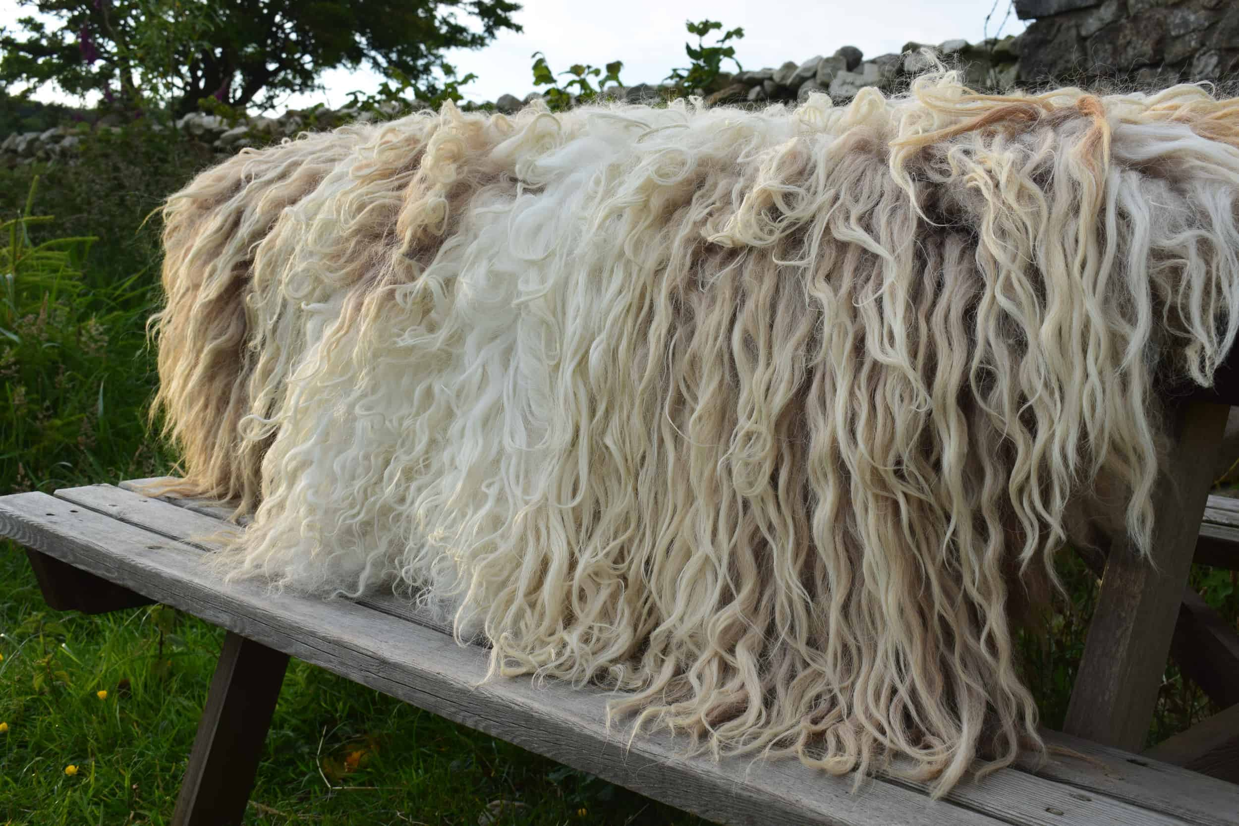 Felted fleece rug vegetarian sheepskin dandelion living rug natural sheep friendly ethical wool sustainable made in wales