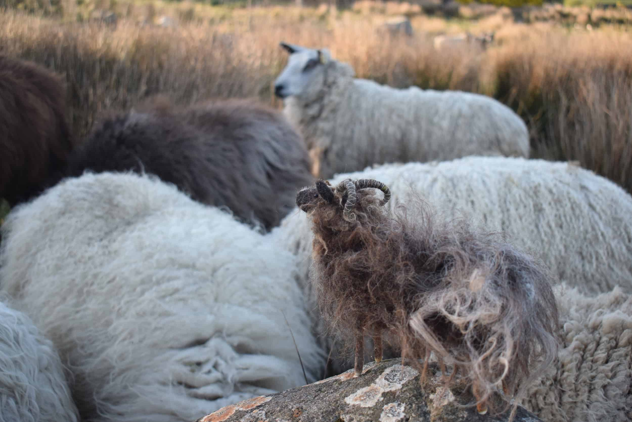 Magic rock mini needle felted sheep handmade woolsheep jacob cross shetland magical patchwork sheep
