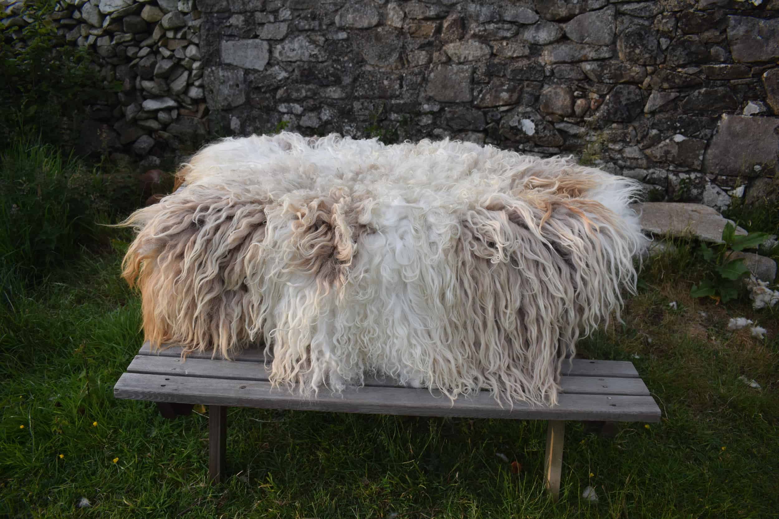 Felted fleece rug vegetarian sheepskin dandelion living rug natural sheep friendly ethical wool sustainable throw