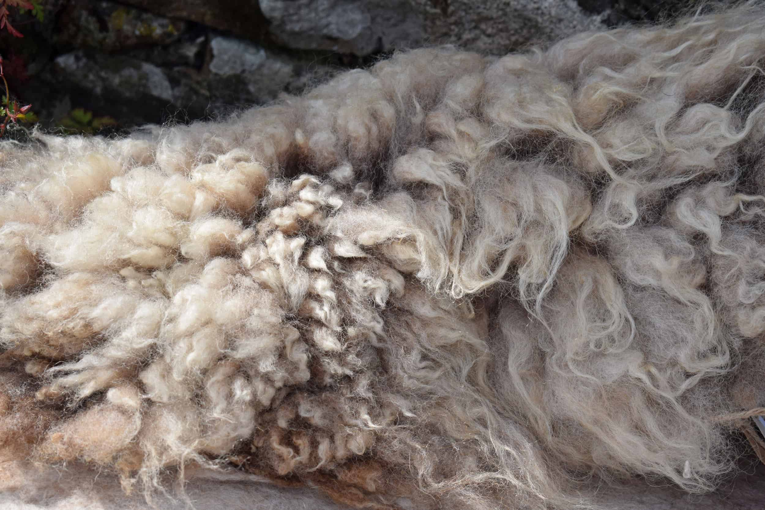 Felted fleece vegetarian sheepskin wool seat pad brown harriet ethical kind fiber
