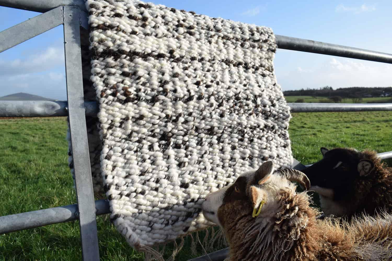 pegloom woven handmade large woven wool rug throw handmade brown white fern patchwork sheep soay cross jacob fleece