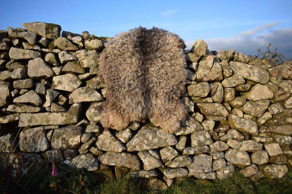 vegetarian sheepskin
