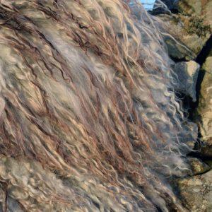 icelandic fleece