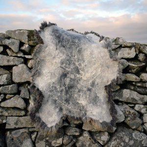 amazing fleece felt rug