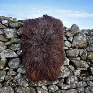 wild wool rug