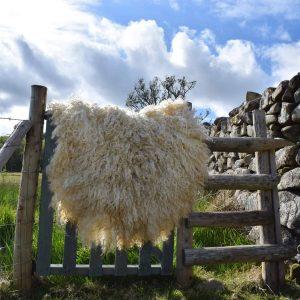 felted fleece rug alice
