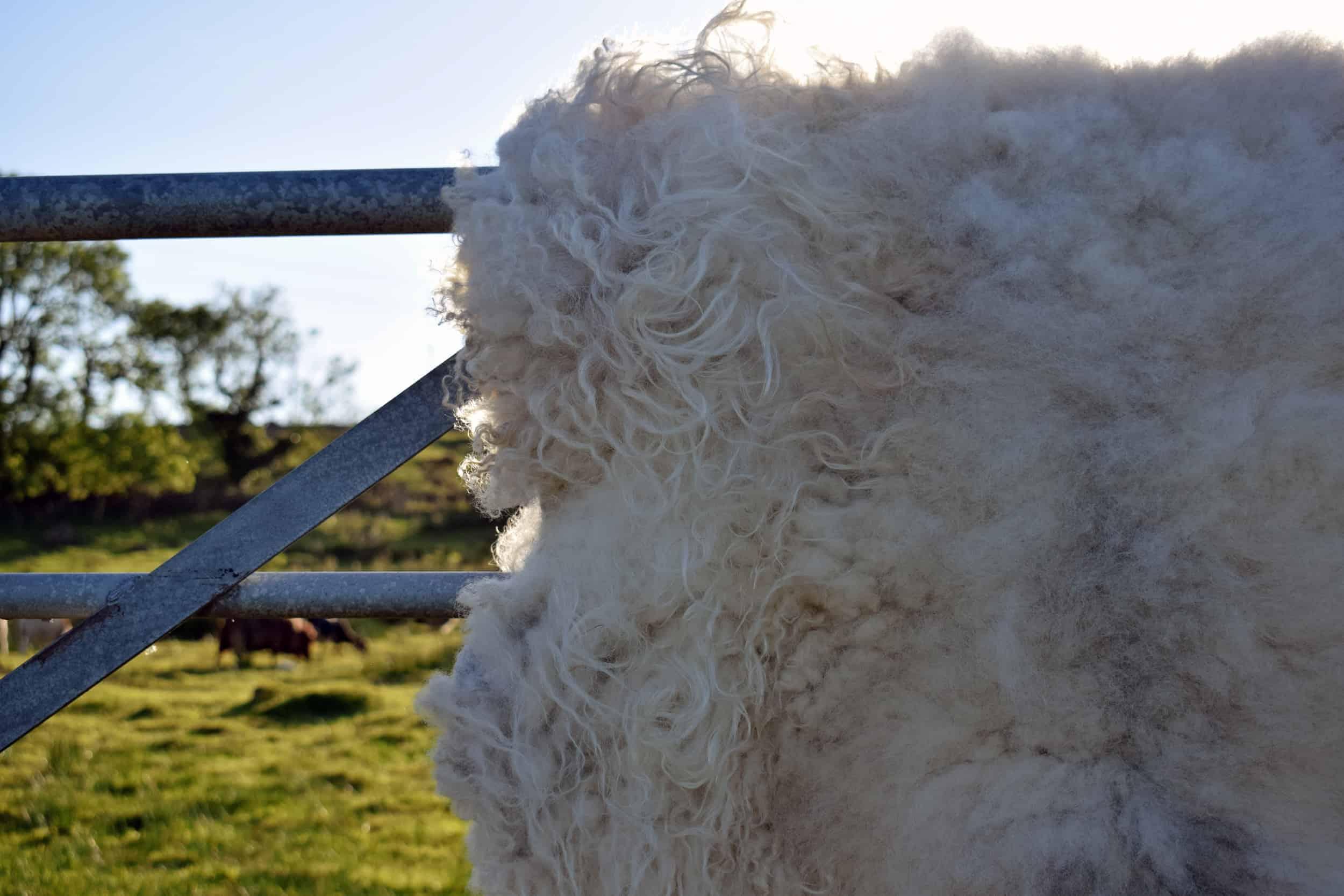 elder felted fleece rug