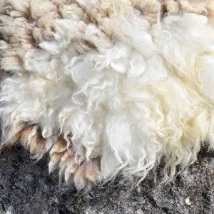 felted fleece rug