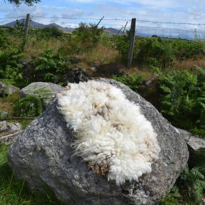 marmalade felted fleece rug