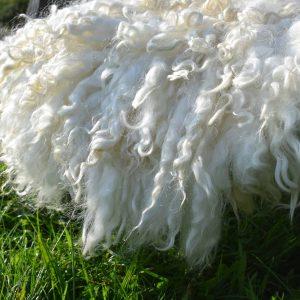 felted fleece sheepskin alice